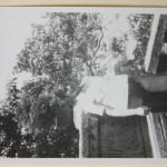 1977.05.01 西山龙门 IMG_8929