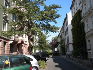 Falkstraße 45
