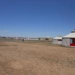 The bare grassland