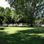 Grace Avenue Park