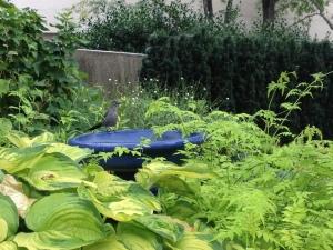 The Ripley Garden