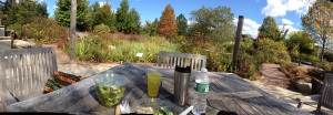 Picnic at the Botanic Garden
