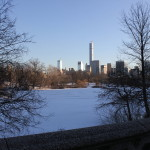Central Park under the snow
