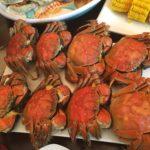 Hairy/mitten crab feast  大闸蟹