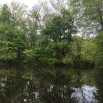 Princeton Canoe & Kayak Rental