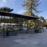 Pine Tree cafe