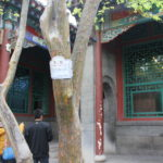 Wanzhu Yuan 2012