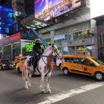 Rider @ Times Square & more